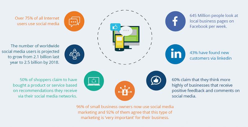 social media audience statistics